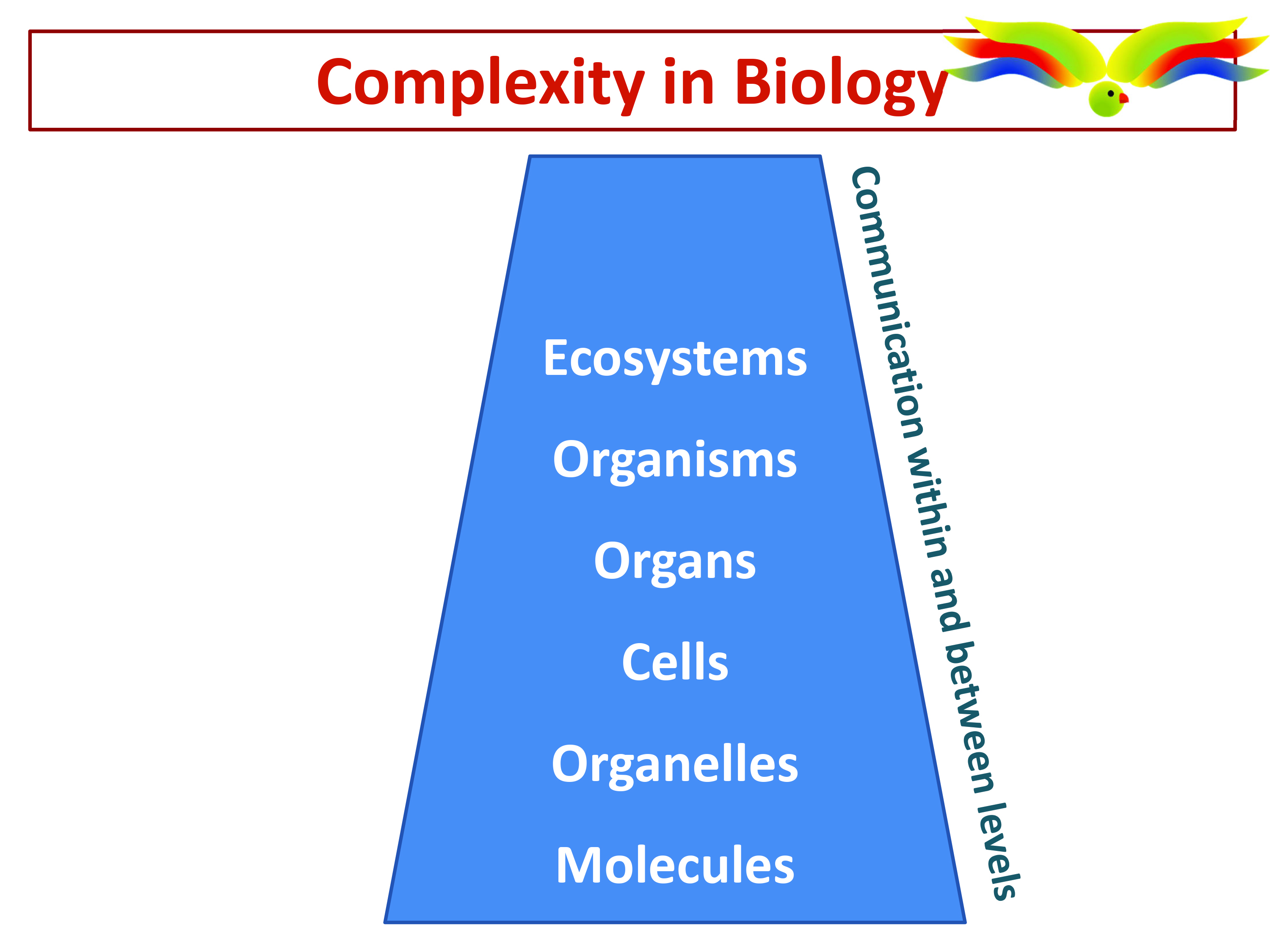 Introduction to Systems Biology - Training School A